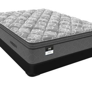 Decorah Soft Euro Pillowtop